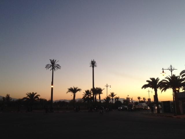 photo 5 (2)